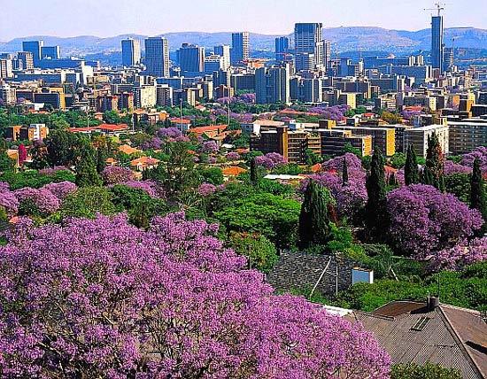 Претория столица юар вид города